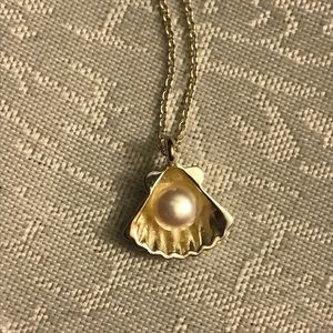 Jewelry - Sterling silver Pearl in Shell necklace